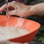 Mẹo bảo quản để cơm không bị thiu trong mùa hè