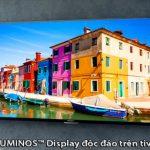 Cùng tìm hiểu về TRILUMINOS Display – Công nghệ hình ảnh độc quyền từ Sony