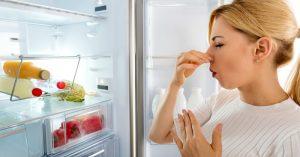 Bạn đã biết cách loại bò mùi hôi khó chịu trong tủ lạnh bằng bánh mỳ chưa